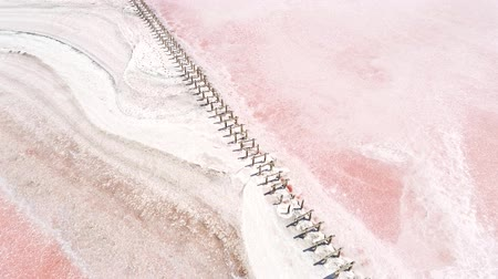 жемчуг : Wild nature beauty. Pink lake water. White dry salt waves.