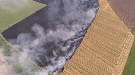steppa : Ecological disaster. Smoldering rural field. Fire smoke. Countryside landscape.