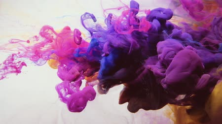 copyspace : Ink cloud overlay. Color blast. Magenta pink blue yellow smoke motion on white background for video editing.
