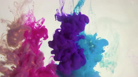 bluestone : Paint shot effect overlay. Color explosion. Blue magenta pink purple bronze smoke cloud on white. Stock Footage