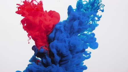 infusion : Paint infusion in water. Chemical polarity. Navy blue red ink mix motion on white background. Stock Footage