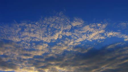 altocumulus : timelapse altocumulus clouds in evening sunset sky