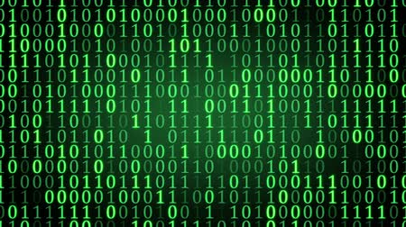 green binary digital code. computer generated seamless loop abstract motion background