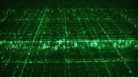 Dolly shot of green binary code grid. Information technology concept. Computer generated seamless loop animation 4k (4096x2304)