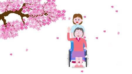 uzun ömürlü : Street in spring cherry blossoms bloom for the elderly and care