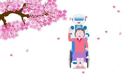 uzun ömürlü : Spring cherry blossom walking wheelchair elderly care robot Stok Video