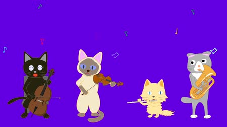 trąbka : Cat concert. Cats sing songs and play instruments.