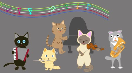 dyrygent : Cat concert. Cats sing songs and play instruments.