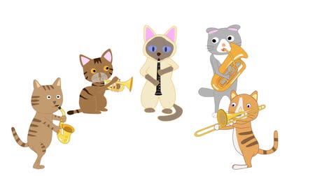 trombeta : The concert of the cat. Cats who play instruments. Stock Footage