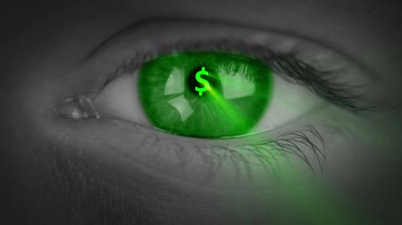 bulva oční : The human eye close-up. Glowing signs of the currencies (dollar, euro, pound, yen) appear in the pupil of eye