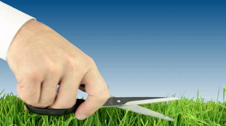 makas : Sky-blue background. Young green grass. Mens hand in a white shirt, mows the grass with scissors