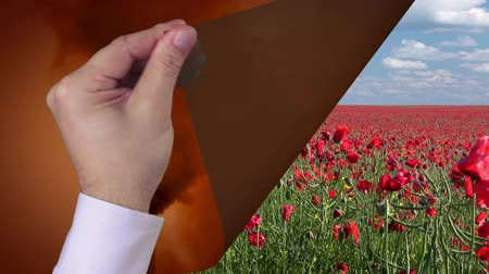 natura : 2 in 1. The first video: From the black pipe belching black smoke and obscures the sky. Mens hand in a white shirt turns the page. The second video: Boundless poppy field and blue sky with white clouds Wideo