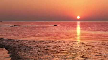 uçan : Cloudless sky. Multi-colored sunrise over the sea. Silhouettes of two birds fly towards the sun Stok Video