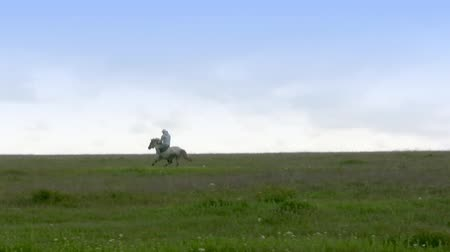 koňmo : Lone horseman rides at a gallop across the steppe on the background of the cloudy sky