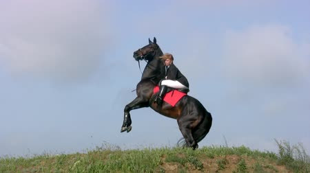 cavalinho : Thoroughbred horse black suit with a young horsewoman hoof beats against the backdrop of steppe grass and bright blue sky Vídeos