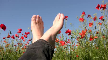 релаксация : Clear, sunny weather. On poppy field lies a serene man and stretches his legs. Can be seen just feet against the sky. Poppies are trembling in the wind