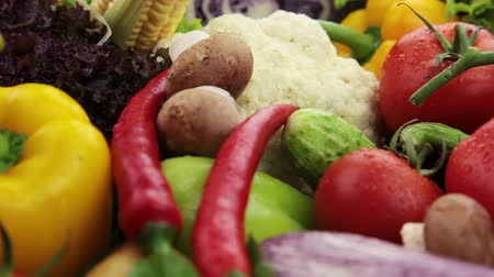 üretmek : Fresh vegetables: cabbage, carrot, corn, cucumber, garlic, onion, pepper, potatoes, salad, tomato, mushrooms Stok Video