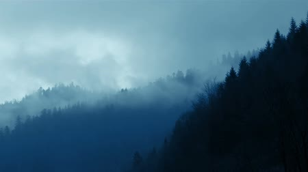 esőerdő : The mountain slopes are covered with dense forest. Very cloudy weather. Storm clouds and fog