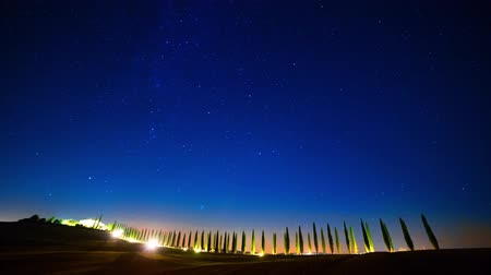 toscana : Starry Sky over the Cypress Alley. Time Lapse 4K