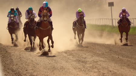 cavalinho : Horse Racing at the Odessa hippodrome. Slow motion