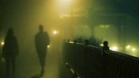 mistério : Night. Thick fog. A guy and a girl walking in the park. Slow motion
