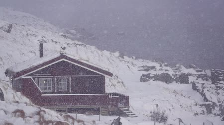 İskandinavya : Winter Norway. Fjord on Lofoten. House on the Shore and Snowfall. Slow motion