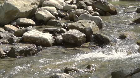 völgy : Stormy water flow between the stones. Close-up. Sunny weather. Slow motion