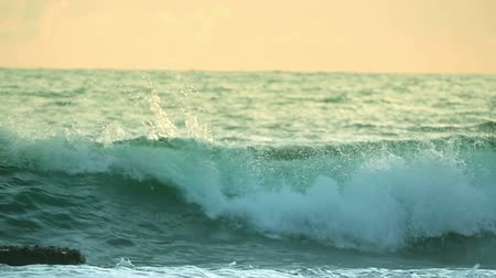 pedregoso : Stony seashore. Green wave in the sunset. Slow motion