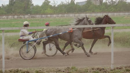 sulky : Harness racing at the racetrack. Two riders compete on the treadmill. Slow motion Stock Footage