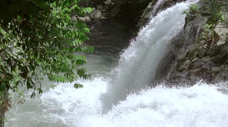 sűrű : River in the dense summer forest. Splash waterfall. Slow motion