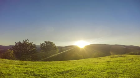 Summer glade with green grass. Morning. The sun comes from the top of the hills. Time lapse