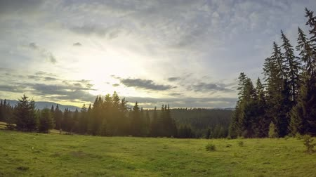 Summer pasture between the mountains and the forest. Clouds run fast. Rotatable time lapse