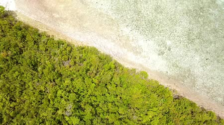 вертикально : Indonesia Sunny day over the ocean. Flying over a small tropical island overgrown with jungle. Aerial view vertically down Стоковые видеозаписи