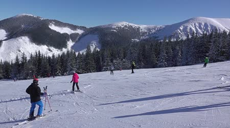 Ski resort in sunny weather. A lot of people on the slope for beginners. Slow motion Стоковые видеозаписи