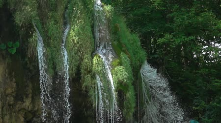 hırvatistan : Thick summer forest on top of a cliff. The streams of the waterfall are broken in flight into minute spray. Slow motion Stok Video