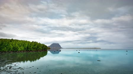 High tide coming to mangrove lagoon at sunset time lapse. Sea predators fish out to shallow water. Clouds over the Le Morne Brabant at sunset time. Mauritius.