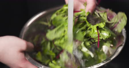 salad : Handheld shot of female hands washing mix salad leaves, 4k 60fps footage