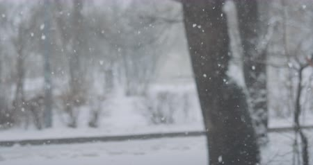 queda de neve : Slow motion background of falling snow on town streets on a winter day
