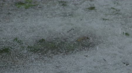 pocsolya : Slow motion closeup of hailstones falling on the pavement during strong hailstorm Stock mozgókép