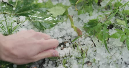 povodeň : Slow motion closeup pov male hand showing hailstones after hailstorm Dostupné videozáznamy