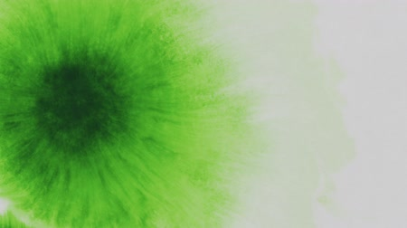 borrões : Slow motion green ink drop on white wet paper