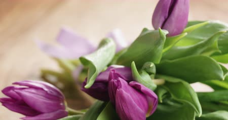 kartpostal : Closeup pan of bouquet of purple tulips on wood table with mothers day paper card Stok Video