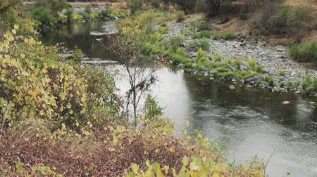 lanscape : gimbal pan shot of merced river landscape Stock Footage