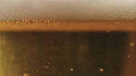 quartilho : Slow motion poured lager beer in glass backlit by sunset light Stock Footage