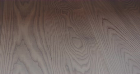 осмотр : Slow motion closeup man hand touches ash wood floor