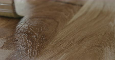 oak : Slow motion applying oil finish to oak surface with brush