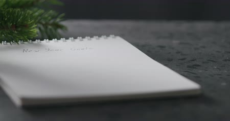frase : Slow motion tilt shot of notepad with new year goals phrase Vídeos