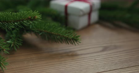 sekély : Closeup right slide shot reveal white gift box in spruce twigs