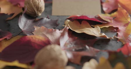 linden : Slow motion slide shot of composition with autumn leaves with paper card