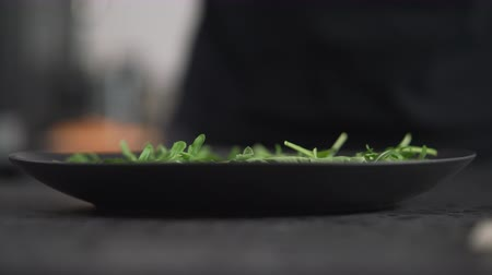 spek : prosciutto falling into black plate with arugula leaves Stockvideo